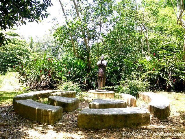Jardin Botanico, Caguas