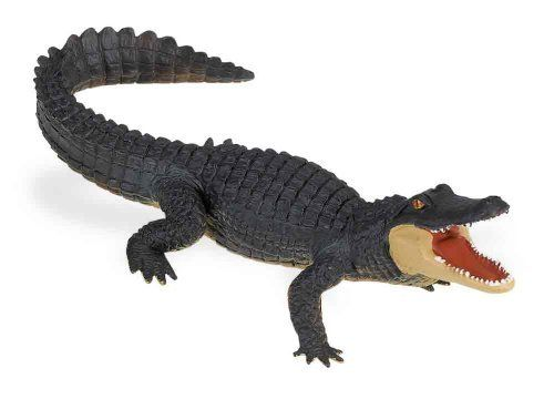 "Safari Wildlife Alligator Figure by Safari Ltd.. $6.46. From the Manufacturer                Play is the essential joy of childhood. Through play children learn about themselves, their environment and the larger world. At Safari Ltd. We design toys that assist the joy of play. In a highly technical world, the most endangered species is the imagination. Perhaps we should spell that with a capital ""I"". Without imagination, the individual loses the creative spark. W..."