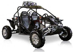 BMS Cherry Bomb 600 BLACK Gas 2 Cylinder 586cc Buggy Go Kart