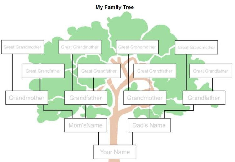 blank family tree template 2019 printable collection pinterest