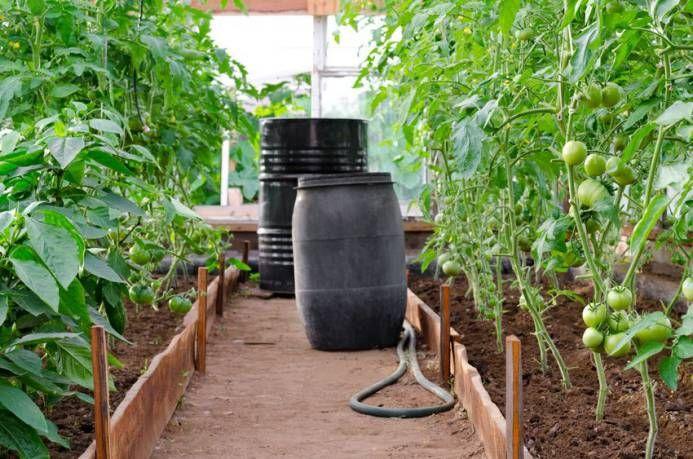 Construire une serre en bois plan de construction - Comment monter une serre de jardin ...