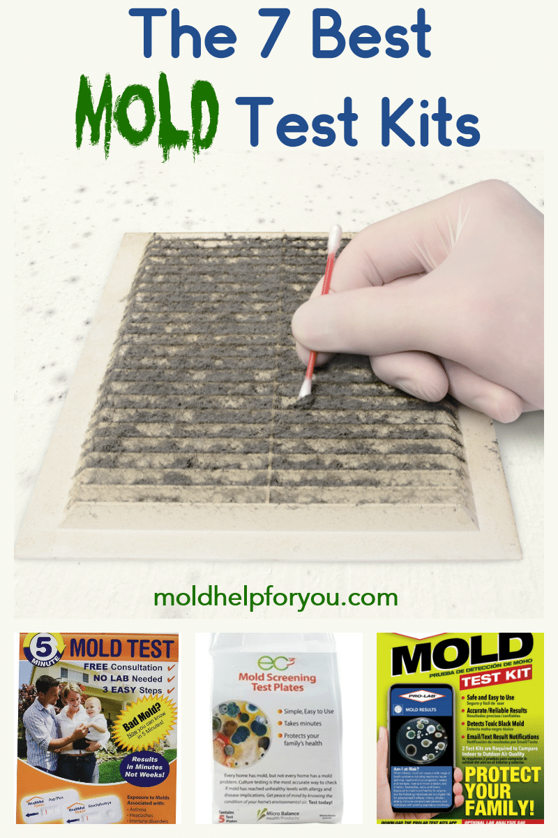 The 7 Best Mold Test Kits Home Mold Test Molding Mold Kit