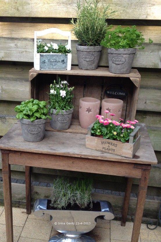 Oud tafeltje veilingkist potjes kruiden en bloemen for Schutting intratuin