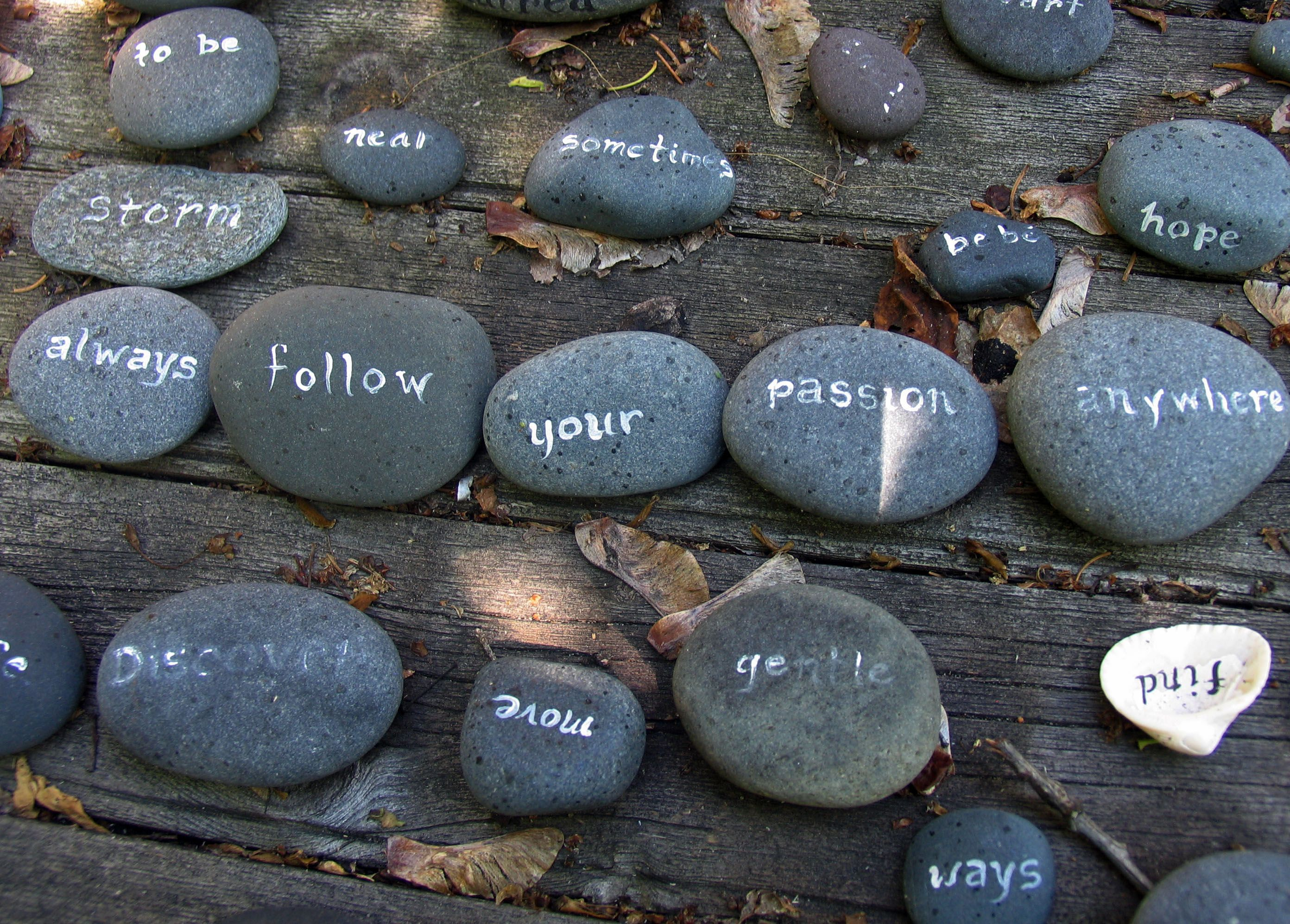 always-follow-your-passion-rocks-up_2501.jpg (2784×1995)