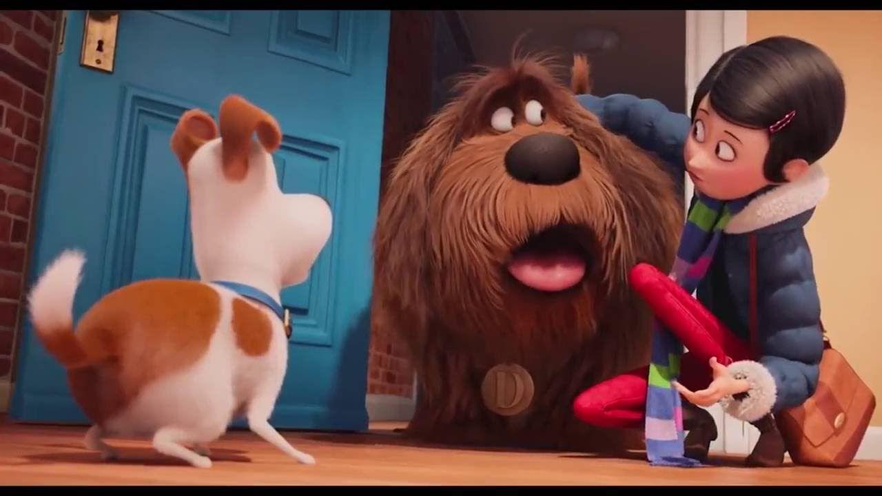 រ ង Hollywood ស រ ប ឆ ន 2016 2016 New Upcoming Movie Trailers 19 Of Secret Life Of Pets Kid Movies Pets Movie