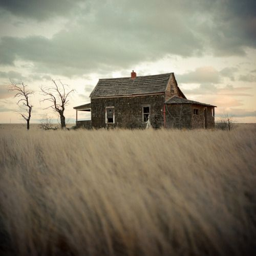 photography medium format landscape trees perspective field colors brown house land Wind solitude grass analog hasselblad horizon smooth focus dof Oregon depth of field 80mm 500cm old house 120film
