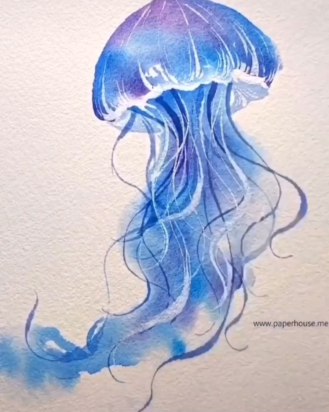 Paul Rubens Jellyfish Paintings👉www.paperhouse.me💝