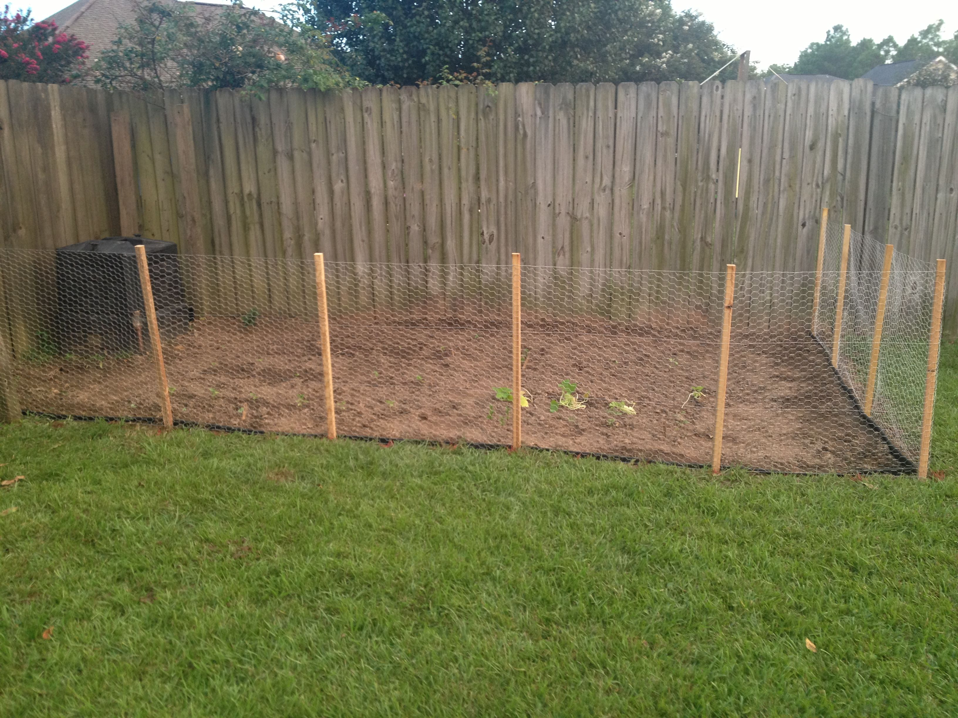 What should I name it??? My New Garden! | Pinterest | Garden fencing ...