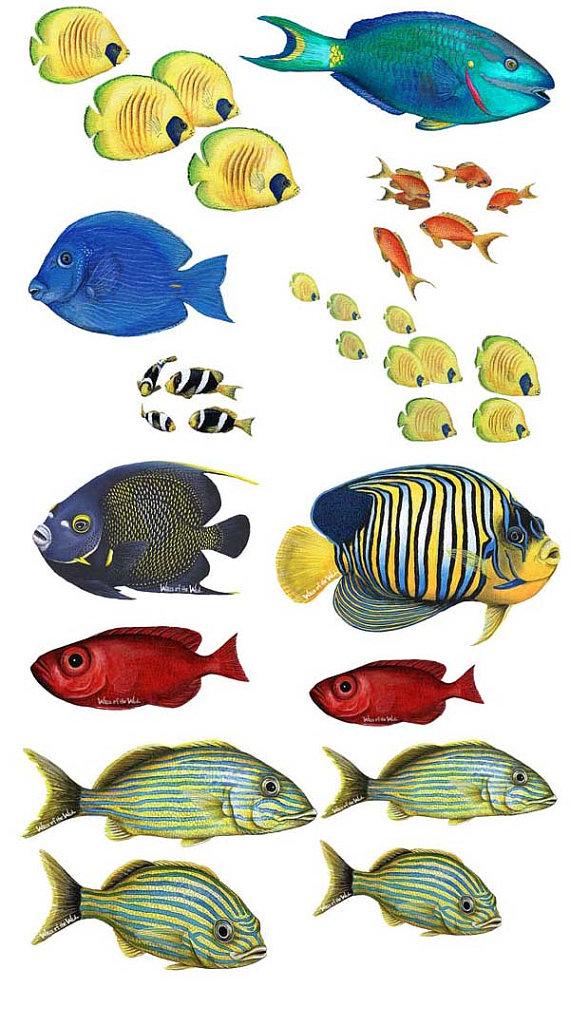 Tropische Vissen Assortiment Muur Stickers Rysunki Delfiny Ryba