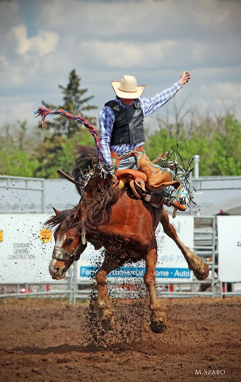 Day 3, photo of the day! Rainmaker Rodeo!