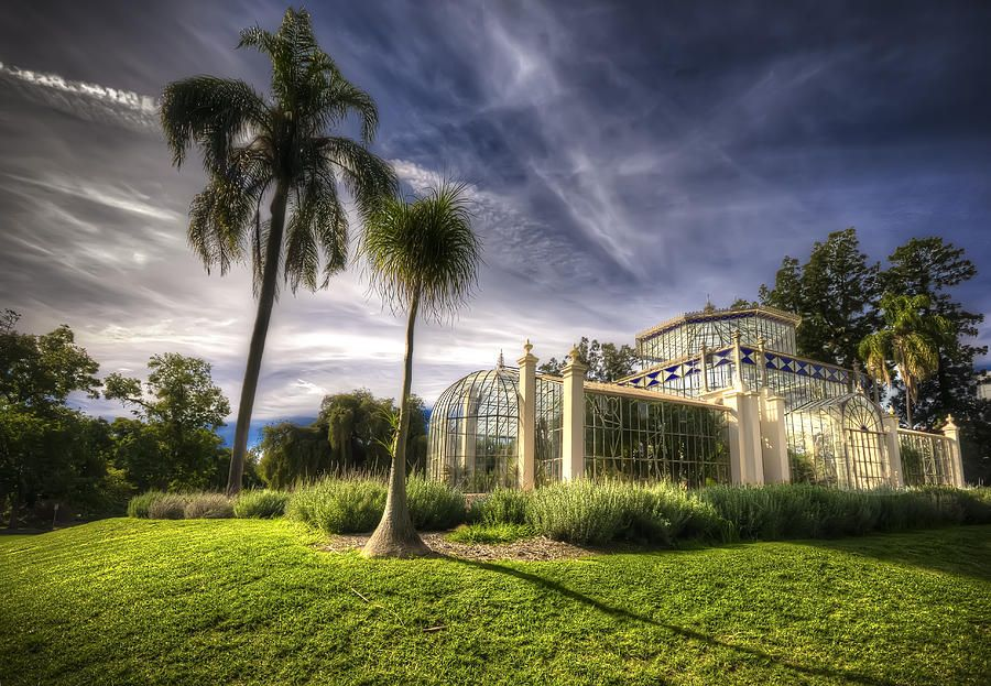 Victorian Palm House Photograph by Wayne Sherriff