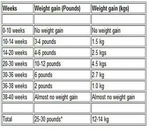 Weight gain in pregnancy chart ibov jonathandedecker com