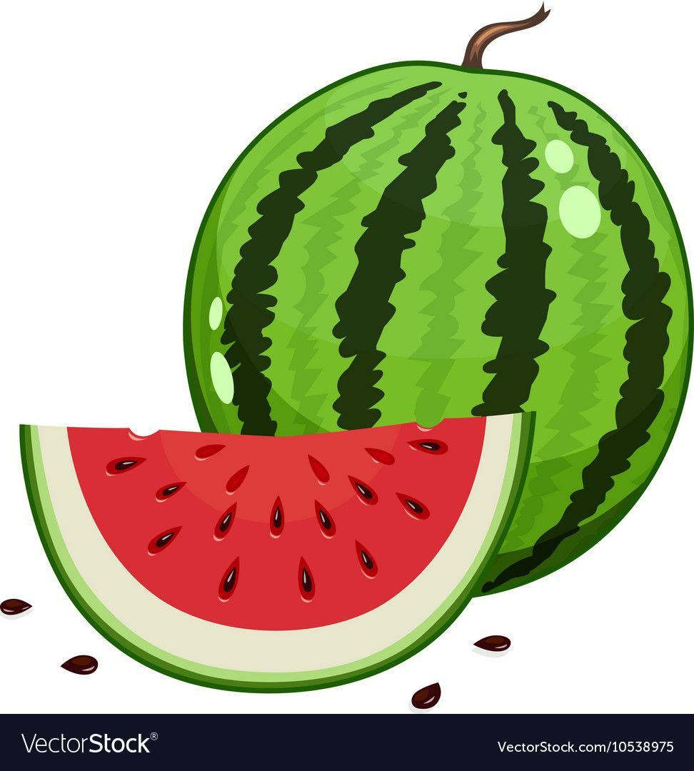 Cute Watermelon Cartoon Watermelon Summer Cold Drink Summer Food Summer Summer Fruit Fruit Png Transparent Clipart Image And Psd File For Free Download Watermelon Cartoon Cute Watermelon Summer Watermelon