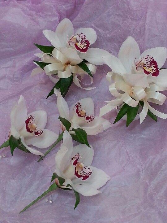 Cymbidium Orchid Wrist Corsages: Single White Cymbidium Orchid With Italian Ruscus Foliage