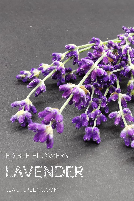 Edible Flower Lavender In 2020 Edible Flowers Edible Edible Flowers Cake