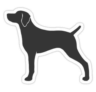 weim Got Weimaraner Sticker Die Cut Vinyl
