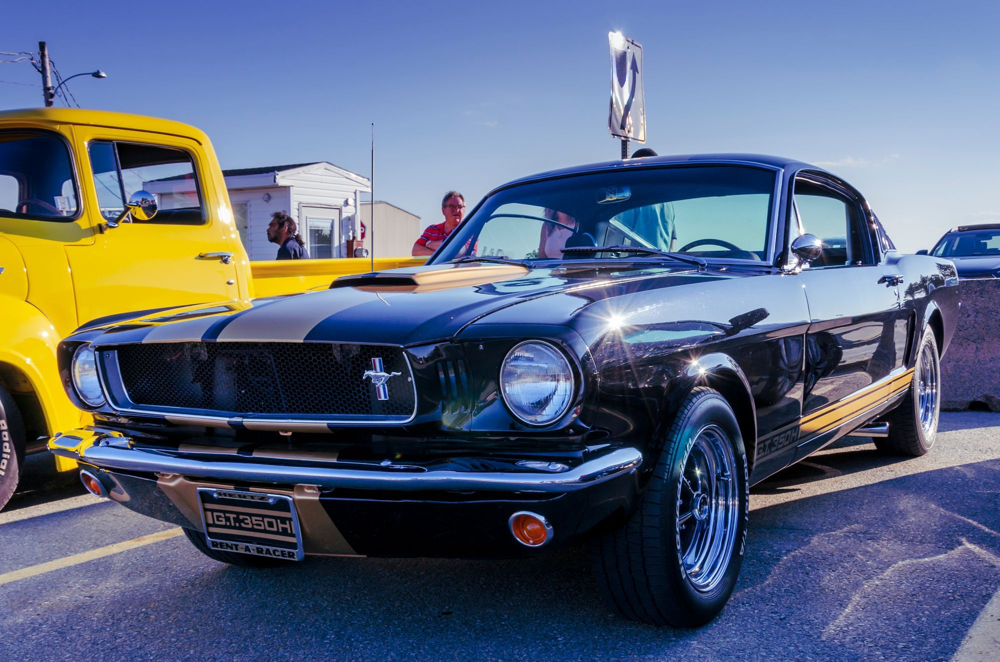 1966 Shelby Mustang Mustang Gt 350 Mustang Shelby Mustang Gt