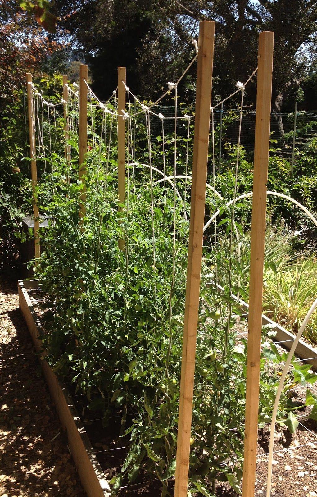 Our Home Outdoor gardens, Garden, Garden boxes