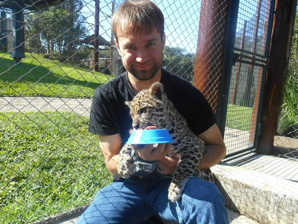 PROGRAM SPOTLIGHT: Looking to work with exotic animals? The animal sanctuary in #Brazil might be exactly what you are looking for...The organization that runs this property has painstakingly replaced non-native plants with indigenous species over the last fifteen years, and now the sanctuary is home to parrots of all colors, tortoises, tapirs, bush dogs, ocelots, pumas, jaguars, spider monkeys, and dozens of other types of animals.  #conservation #volunteerabroad