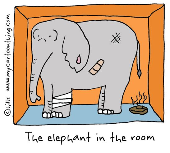 Image result for Image of the elephant in the room