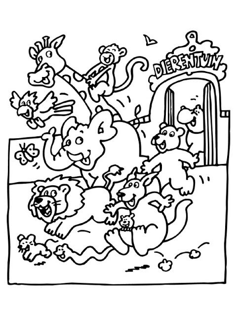 Zoo Animals Colouring Sheet Zoo Animal Coloring Pages Zoo