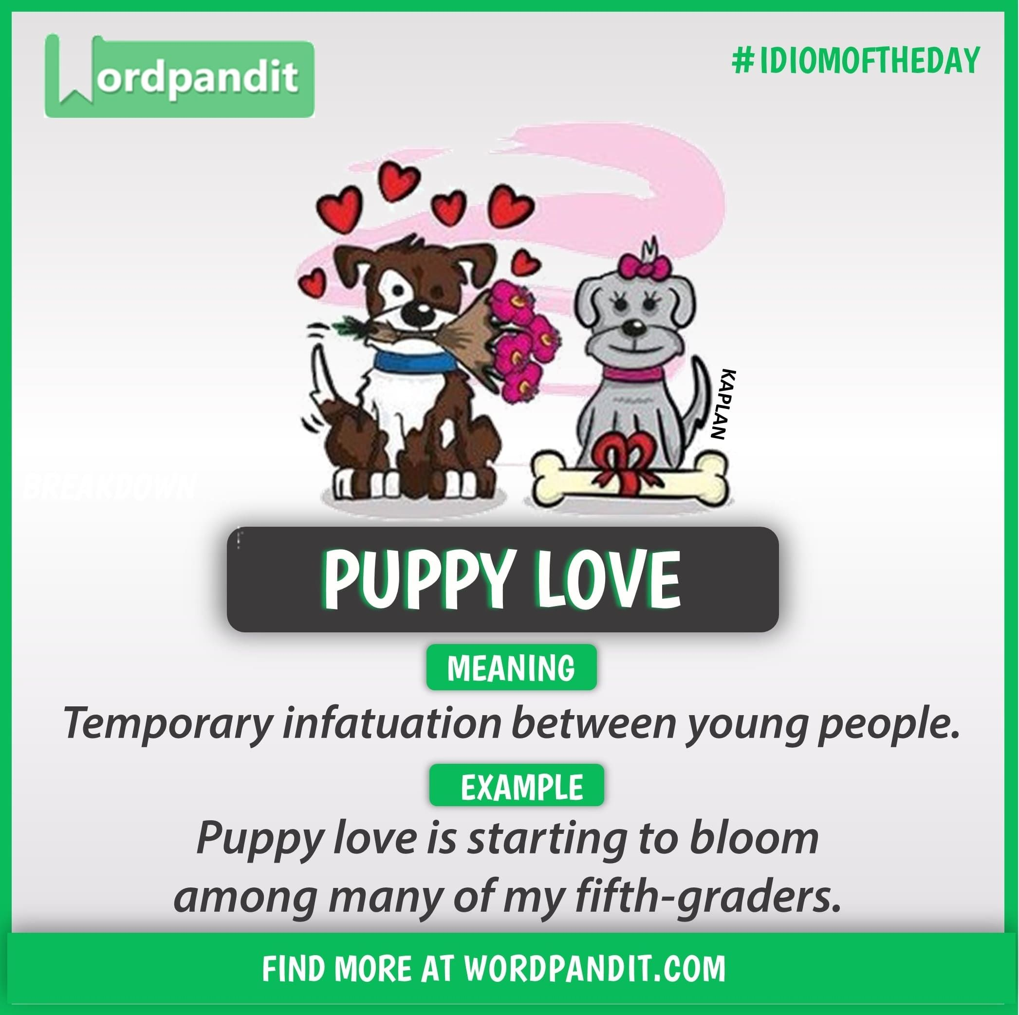 Idiom of the day Puppy Love (With images) Learn english