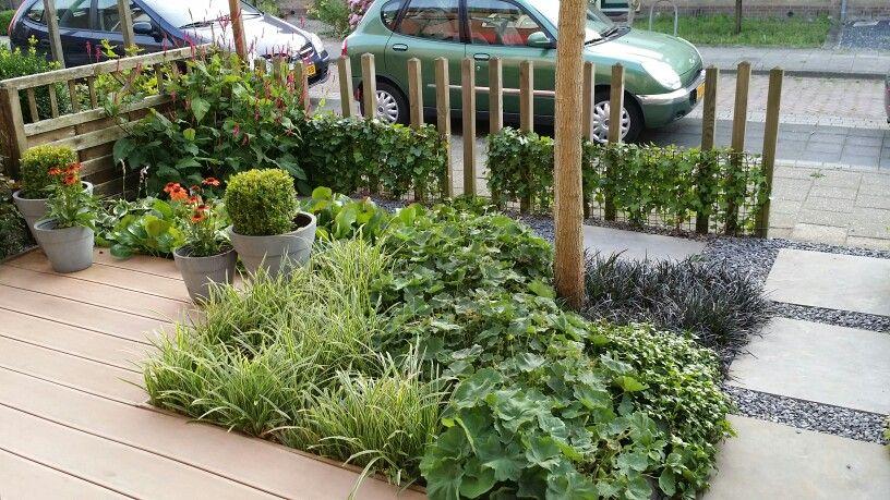 Voortuin rijtjeshuis voortuin garden yard en plants