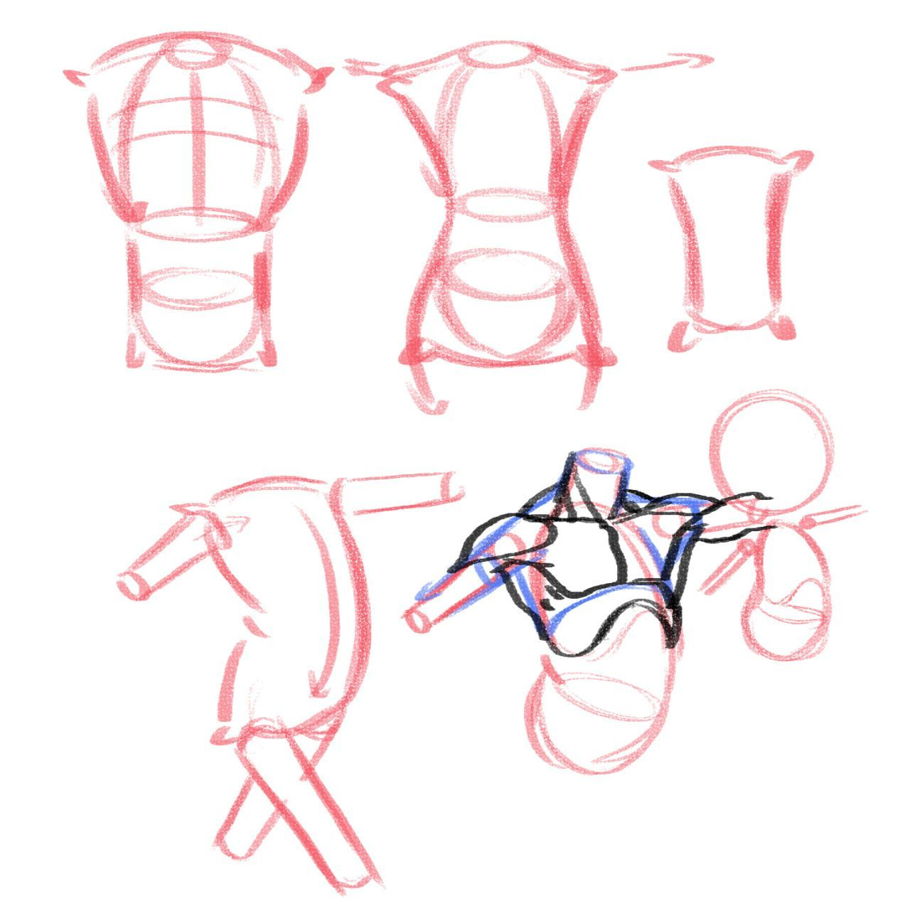 5 Exercises to Get Better at Drawing Anatomy reference