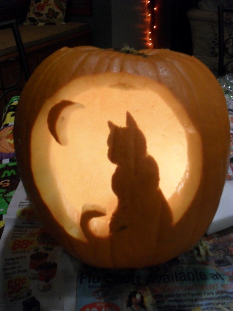 Free cat pumpkin carving template halloween pinterest for Cat carved into pumpkin