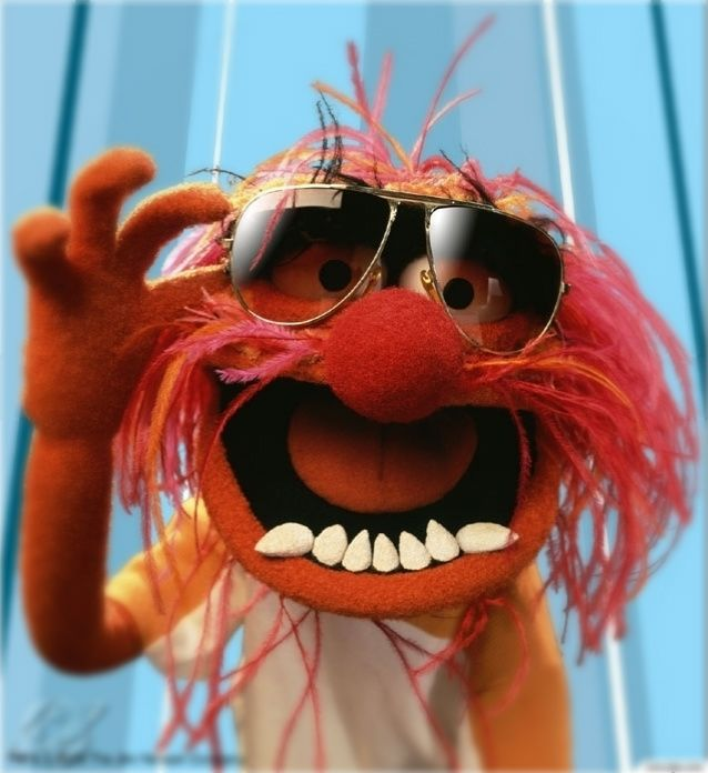 Animal Muppets Image