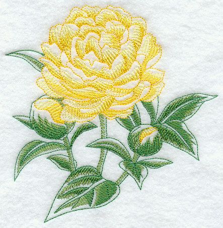 Peony Beauty Embroidered Terry Kitchen by forgetmeknottreasure