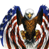Bill To Create Panel That Could Remove Trump From Office Quietly Picks Up Democratic Support Patriotic Tattoos American Flag Eagle Eagle Tattoos