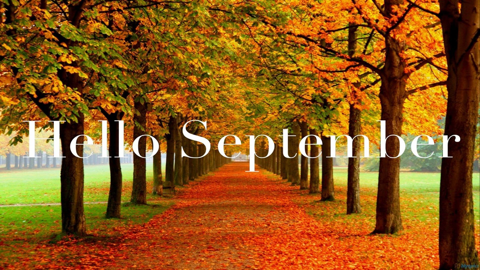 Incroyable Hello September Month September Hello September September Quotes