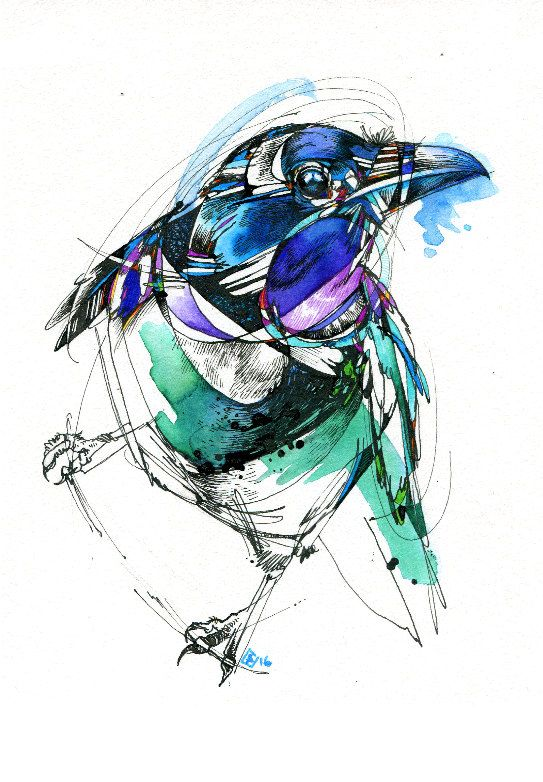 Clever Magpie 5 x 7 Watercolor Bird Painting by AbbyDiamondDraws