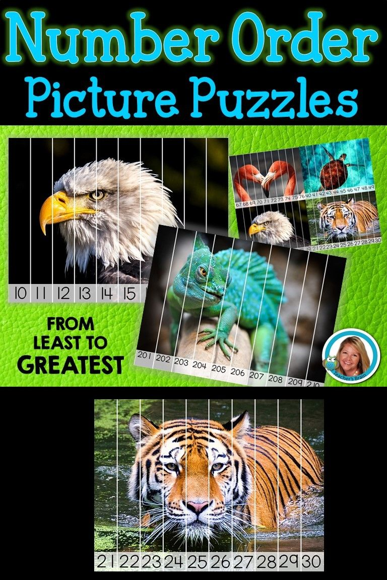 Number ordering picture picture puzzles ordering
