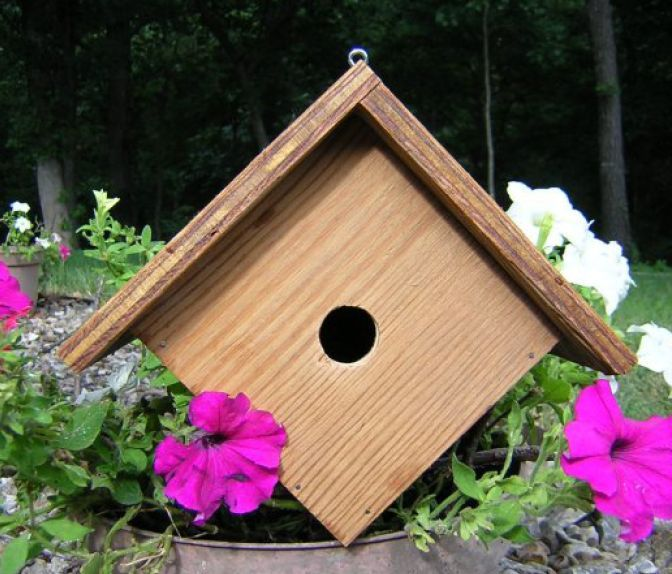 Free bird house patterns free wren wood birdhouse for Simple house design made of wood