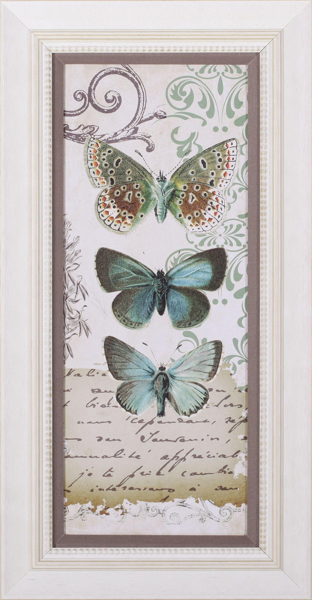 Nature's Jewels II by Mauro Cardoza Framed Graphic Art