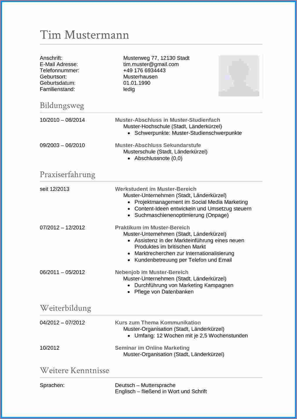 14 Hervorragend Lebenslauf Vorlage Englisch Fotos in 2020 | Resume words,  Types of resumes, Resume template