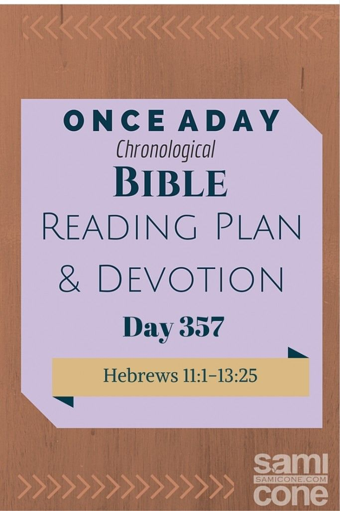 Once A Day Bible Reading Plan & Devotion Day 357