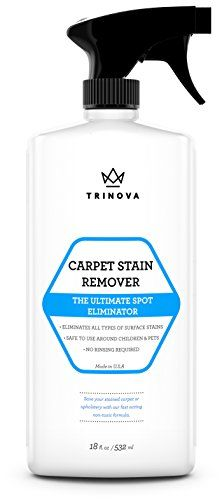 Non Toxic Wood Stain Remover