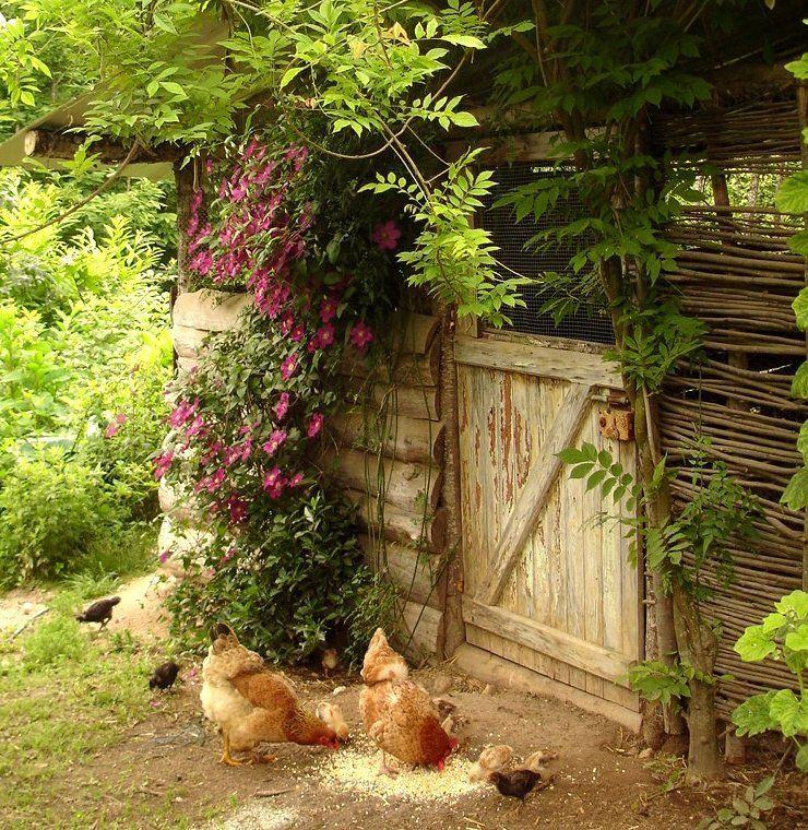 дизайн деревенского двора фото последние