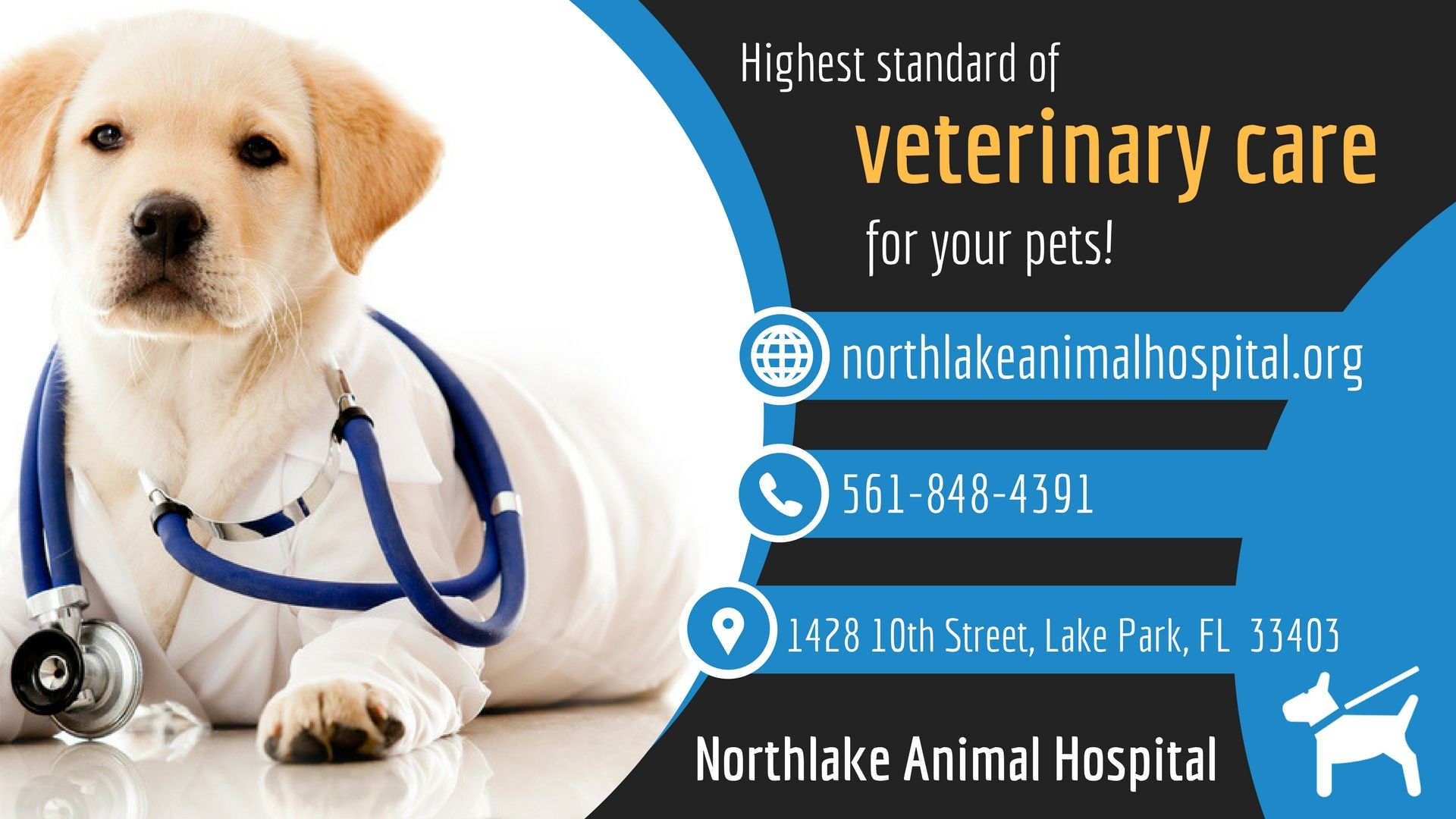 Best Veterinary Hospital For Your Pet Animal Hospital Veterinary Hospital Veterinary Care