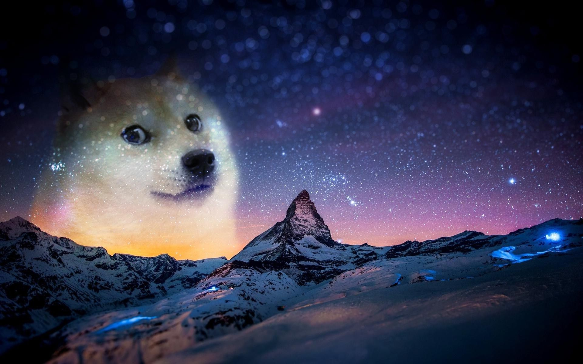 Doge Wallpaper High Quality Doge Meme Top Hd Wallpapers Doge