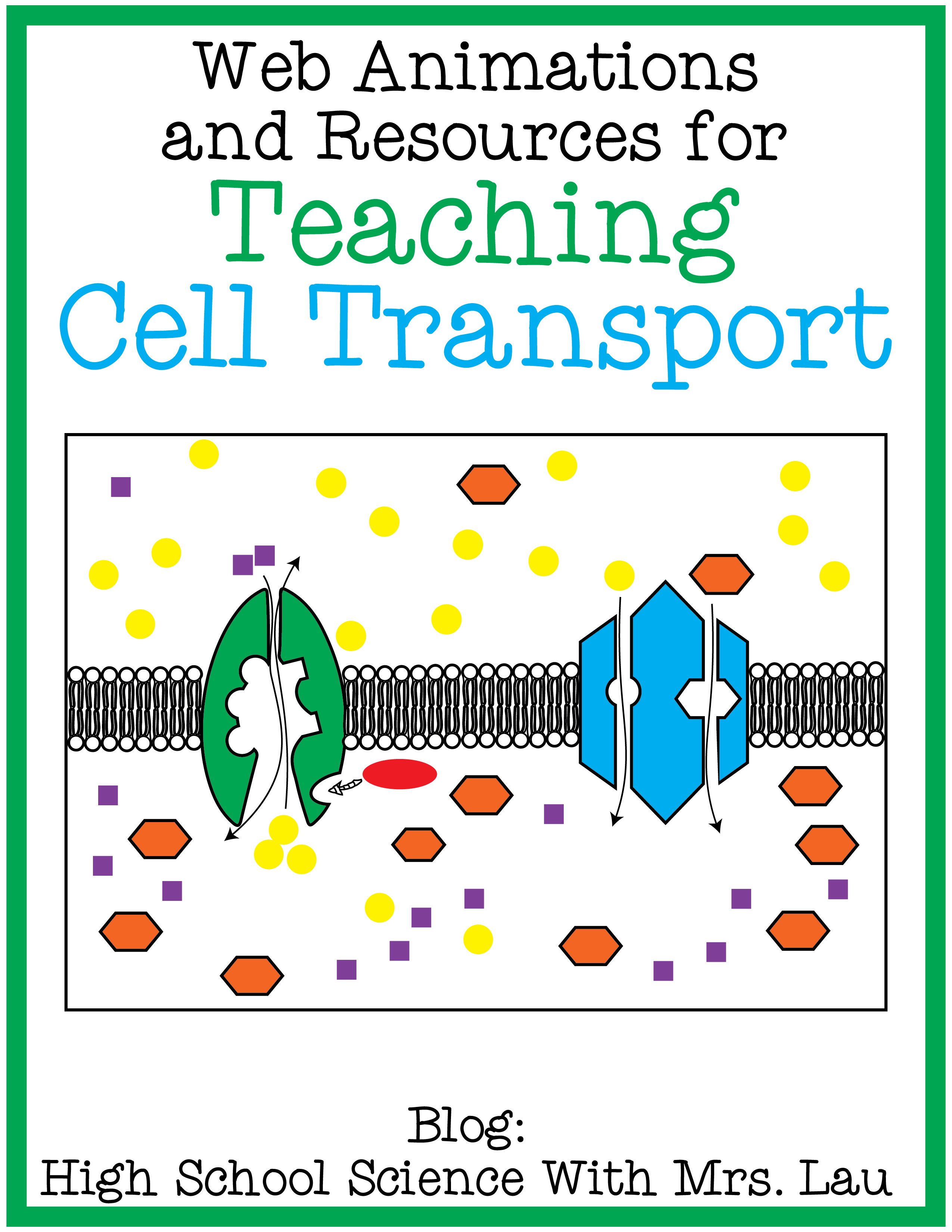 Teaching Cell Transport Osmosis Diffusion Facilitated