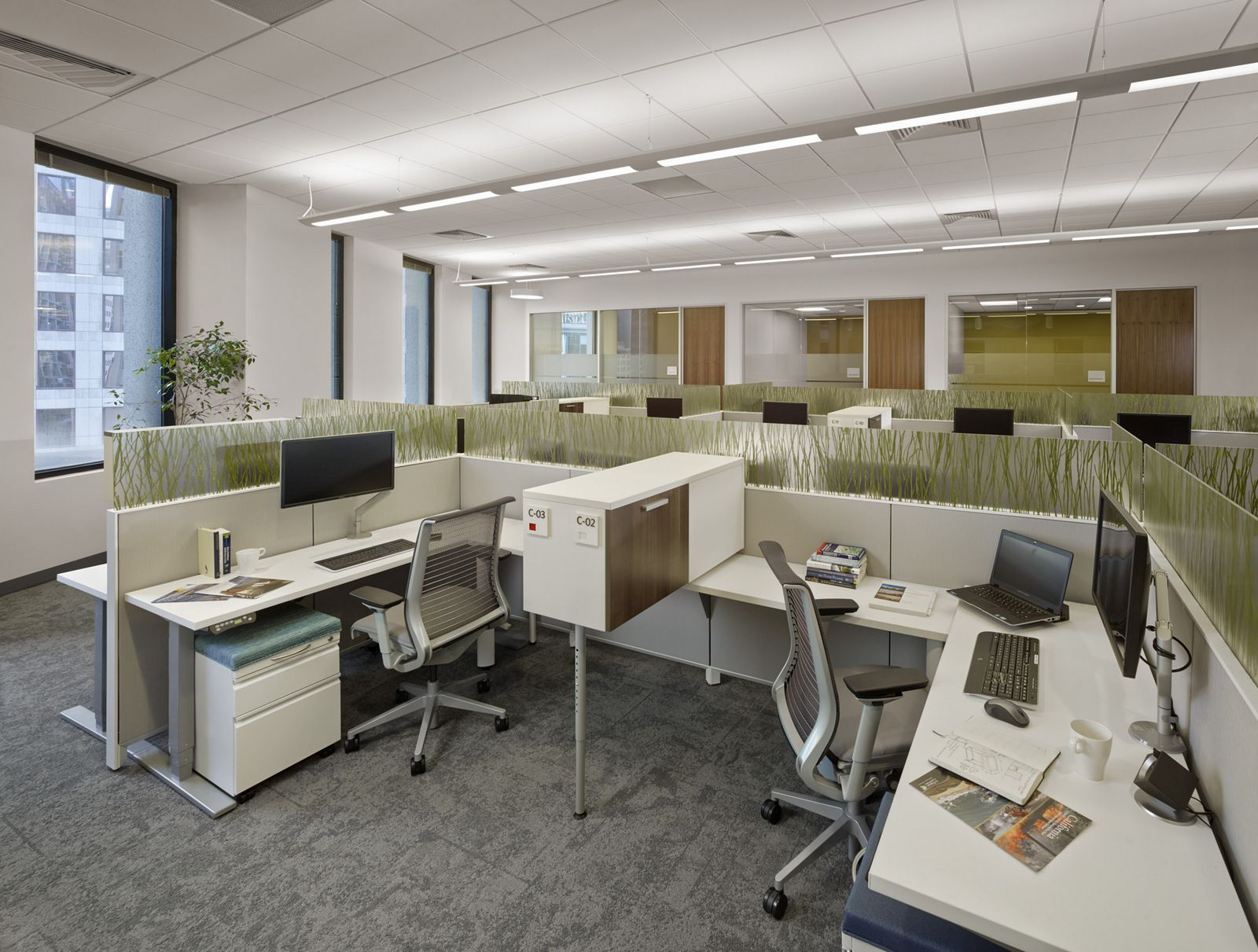 steelcase furniture - low height divided workstations | office