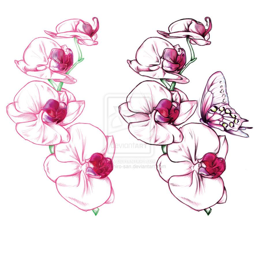 Orchid tattoos orchid tattoo image tattooing designs pic