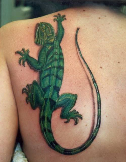 85c60e541 Leguana tattoo by fortuna15.deviantart.com on @DeviantArt | Tattoos ...
