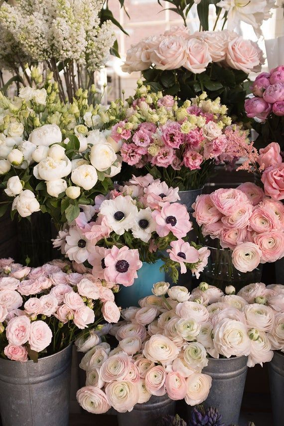 London Photography, Spring Flower Shop, London in the Spring, Pink Flowers in London, Rebecca Plotni