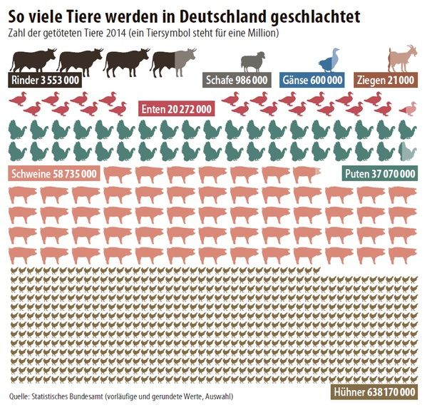 fleischkonsum in D Ziege, Schwein, Schafe
