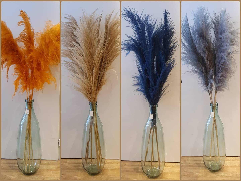 Deze Pampaspluimen Hebben Lengtes Tussen 150 175 Cm Rw4you Pampasgrass Pluimen Naturel Decoratie Woonaccessoires Borne Ze Glass Vase Decor Home Decor